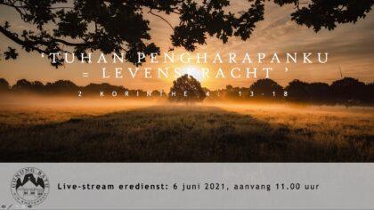 Live Stream Eredienst 06-06-2021 om 11.00 uur voorganger Pdt. E.S. Patty